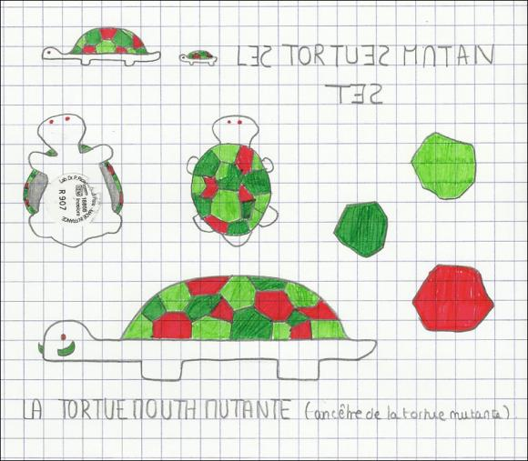 http://drawind.cowblog.fr/images/Tortues.jpg
